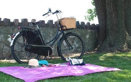 Корзина для пикника на велосипеде